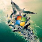 3D and HD windows 8 wallpapers 7986568