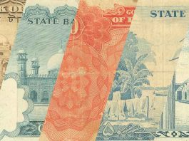 Pakistani Currency Notes Collection - Old and New Rupee Notes